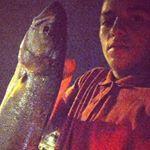 Pescara - Spinning al pesce serra dal molo del porto