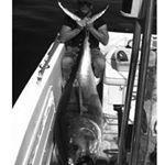 Giulianova - Pesca al tonno con la sarda
