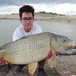 Lago il Delfino:  carpa over 11kg
