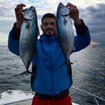 Piombino: pesca alla palamite con la sarda