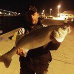 Milo Relix 10mt per questa spigola di 7kg al canale di Fiumicino