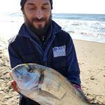 Minturno: orata di 2kg a surf casting