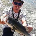 Black bass su RA SHAD al lago Airone