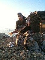 Barracuda di 3kg in Toscana