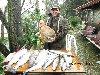 Lago del Grillo - Trote con il prosciutto