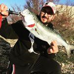 Torre Inserraglio: pesca al pesce serra a gennaio