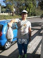 Brindisi - Casale - Orata di oltre 2kg