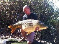 Fano - Carpa da 19kg