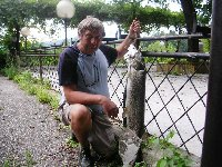 Luccio di quasi 10kg sul fiume Drava