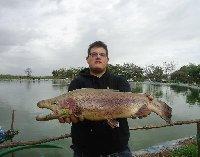 Pura Potenza trota di 4kg ai laghi di Tor Pagnotta