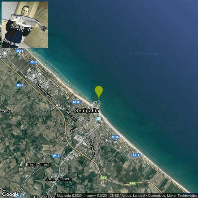 Il luogo di pesca. Lat: 43.724328 Long: 13.221874